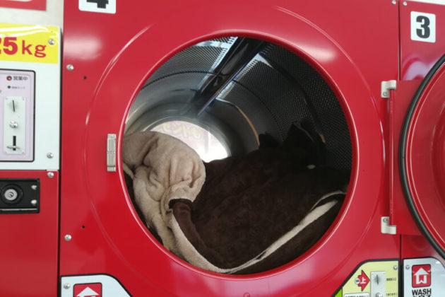 写真:コインランドリーの乾燥機(14kg)にこたつ布団を入れた状態